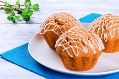 Whole Wheat muffins with raisins, nuts and ginger, close-up Stock Images