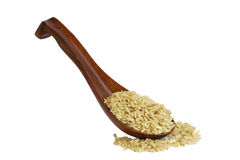 Whole wheat rice. In a wooden spoon (manual focus royalty free stock photos