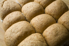Whole Wheat Rolls Royalty Free Stock Image