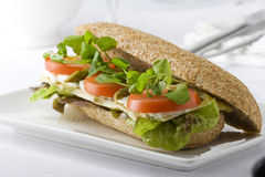 Whole wheat sandwich Stock Images
