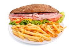 Whole wheat sandwich with fries Royalty Free Stock Image
