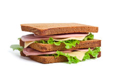 Whole wheat sandwiches Stock Images