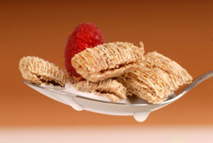 Whole wheat shredded cereal with raspberry Stock Photos
