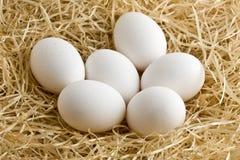 Whole White Eggs in Straw Stock Photo
