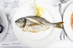 Whole white fish on a white plate. Whole tasty white fish on a white plate Royalty Free Stock Photo
