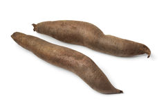 Whole Yacon roots Stock Images