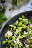 Wholefood vegetarian salad Royalty Free Stock Photography