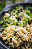 Wholefood vegetarian salad Royalty Free Stock Photos