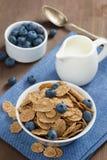 Wholegrain хлопья с голубиками и молоком, вертикальными стоковая фотография