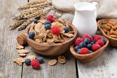 Wholegrain хлопья с свежими ягодами, гайками и молоком стоковые фото