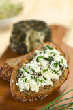 Wholegrain Bread with Goat Cheese Stock Photos