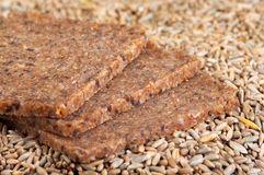 Wholegrain Bread and Rye Grains Royalty Free Stock Images