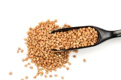 Wholegrain buckwheat in in black wooden spoon, isolated Royalty Free Stock Photography