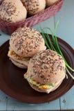 Wholegrain burgers with tofu Stock Images