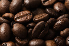 wholegrain coffee beans texture background Royalty Free Stock Photography