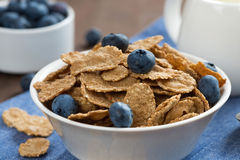 Wholegrain flakes with blueberries and jug of milk, close-up Stock Photography