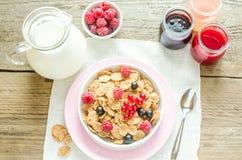 Wholegrain granola met melk en verse bessen Royalty-vrije Stock Foto