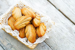 Wholegrain Madeleine Stock Images