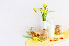 Wholegrain oat crunchy breakfast Stock Photos