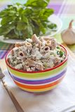 Wholegrain pasta with cottage cheese and spinach Stock Image