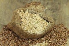 Wholegrain for porridge cooking Stock Photos
