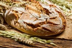 Wholemeal ψωμί Στοκ εικόνα με δικαίωμα ελεύθερης χρήσης