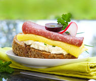 Wholemeal bread with cheese and sausage . Royalty Free Stock Image