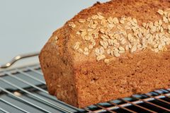 Wholemeal bread fesh baked on an oven rack. Close up of a wholemeal bread on a silver oven rack, fresh baked royalty free stock photo