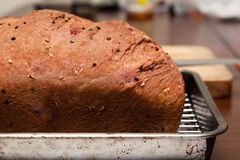 Wholemeal bread loaf with multi grains topping Stock Images