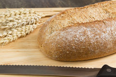 Wholemeal bread. A loaf of wholemeal bread on a wooden board Royalty Free Stock Images