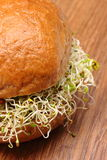 Wholemeal bread roll with alfalfa and radish sprouts Royalty Free Stock Photo