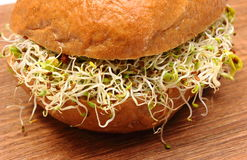 Wholemeal bread roll with alfalfa and radish sprouts Royalty Free Stock Photos