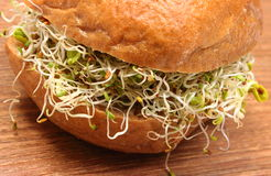 Wholemeal bread roll with alfalfa and radish sprouts Stock Photography