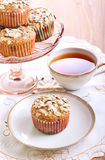 Wholemeal muffins with apricots Royalty Free Stock Image