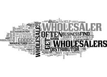 Wholesale Steps To Find A Profitable Wholesaler And Distributor Word Cloud. WHOLESALE STEPS TO FIND A PROFITABLE WHOLESALER AND DISTRIBUTOR TEXT WORD CLOUD Royalty Free Stock Images