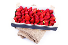 Wholesale Strawberries Stock Photos