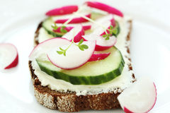 Wholesome sandwich with cheese,  garden radish Stock Photo