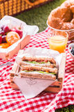Wholesome summer picnic spread Stock Photo
