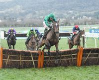 Horse Racing. Wholestone 1st seen here jumping the last at cheltenham races 1-1-18 Royalty Free Stock Photo