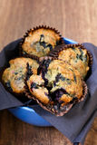 Wholewheat blueberry muffins Royalty Free Stock Photo