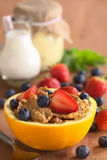 Wholewheat Cereal with Berries Stock Images