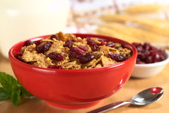 Wholewheat Cereal with Dried Cranberries Royalty Free Stock Image
