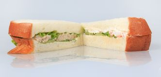 Wholewheat tuna sandwich isolated Royalty Free Stock Image