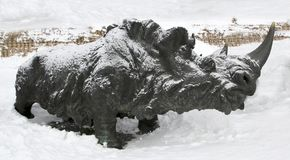 Whooly rhinoceros , Archeopark, Khanty - Mansiysk, Russia Located at the foot of glacial hill, Archeopark shows lifelike sta. Khanty - Mansiysk,Russia Stock Photo