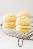 Whoopie pies with cream frosting on cooling rack Royalty Free Stock Images