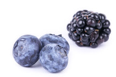 Whortleberries and blackberry Royalty Free Stock Photography