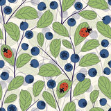 Whortleberries and ladybirds Stock Photography