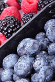 Whortleberries, raspberry and blackberry. Close up Stock Photo