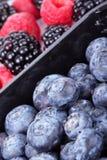 Whortleberries, raspberry and blackberry Stock Photo