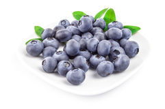 Whortleberry  on a white background. Cutout Royalty Free Stock Photos